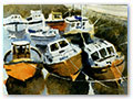 Title: Stonehaven Boats